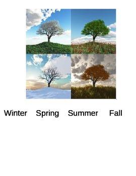 trees through the season book