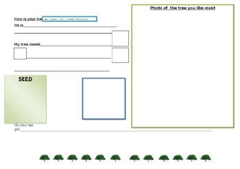 trees worksheet