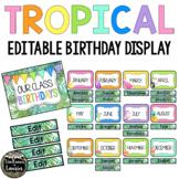 tropical Classroom Decor Birthday Display