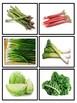 vegetable sorting dual language