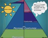 virtual Digital energy trophic level pyramid foldable & dr