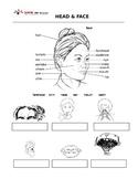 vocabulary- head & faces