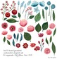 watercolor flowers, winter flowers, christmas clipart set #11