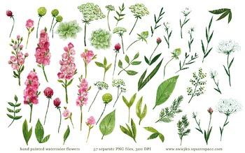 watercolor flowers, meadow clipart set #14