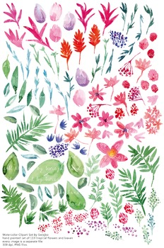 watercolor flowers clipart set #16