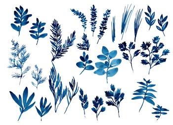 watercolor flowers, herbs clipart set, indigo, cobalt #17