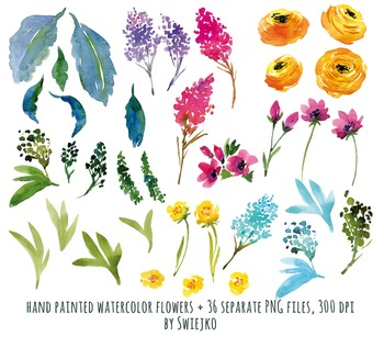 watercolor flowers, meadow clipart set, peonies #20
