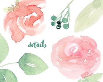 watercolor flowers, roses, leaves, foliage,bouquet clipart set #38