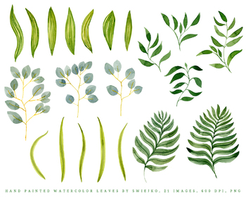 watercolor foliage set, tropical leaves, monstera
