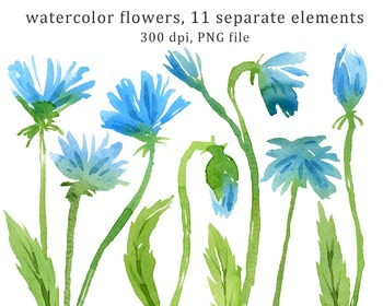 watercolor blue flowers clipart set #10