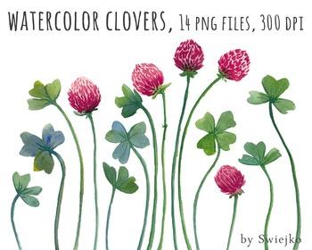 watercolor flowers, clover clipart set #12