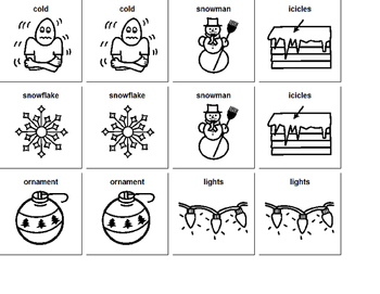 winter core vocab matching cards home/center activity