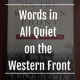 words (expression, language) in All Quiet on the Western Front