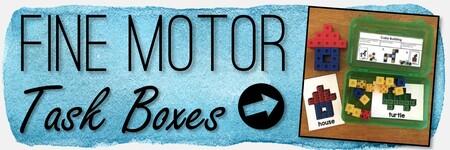 Fine Motor Skills Category