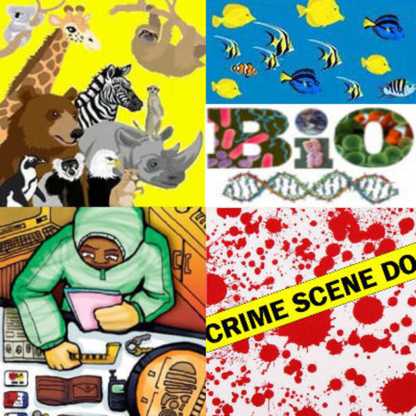 Biology Zoology Forensic Science Teaching Resources Teachers Pay Teachers