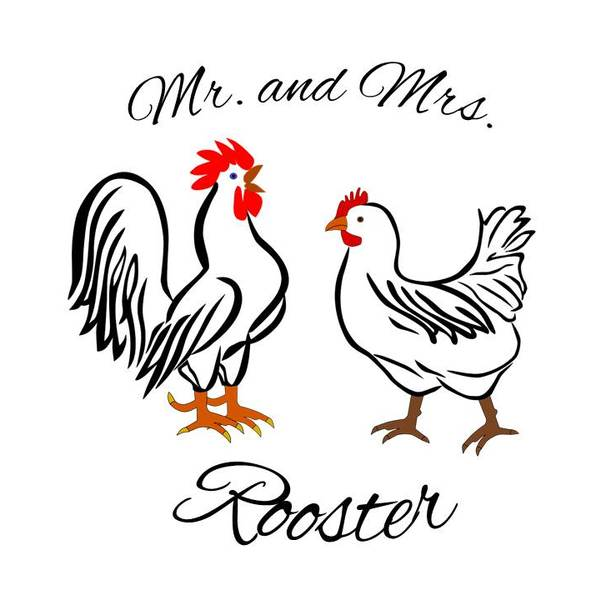 Mr And Mrs Rooster Teaching Resources Teachers Pay Teachers