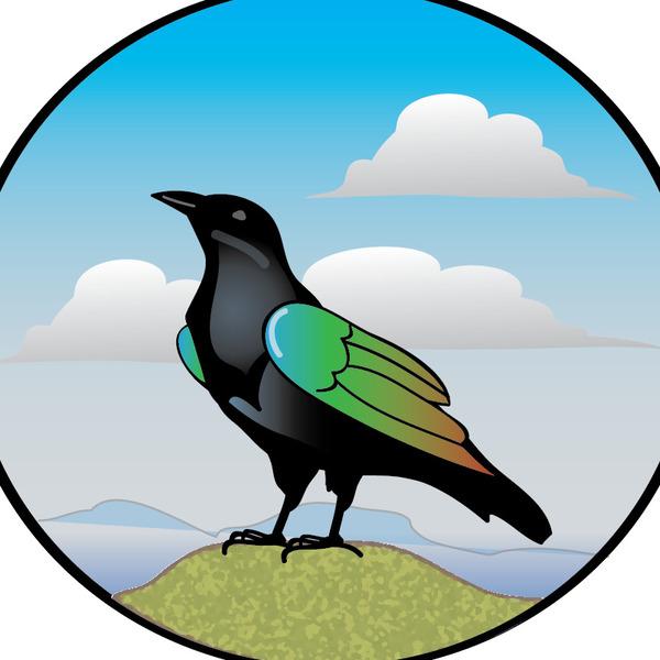 the painted crow teaching resources teachers pay teachers rh teacherspayteachers com