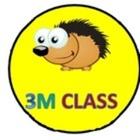 3M Class