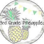 3rd Grade Pineapples