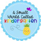 a small world called kindergarten