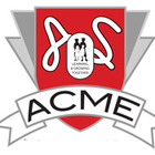 Acme Learning Solutions