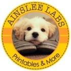 Ainslee Labs