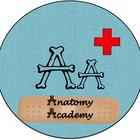 Anatomy Academy with Carole S