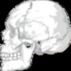 AnatomyTeach