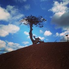 AnnGee B's Elemen-trees