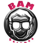 BAM Science