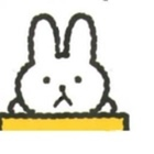 Bilingual Bunny