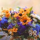 Bio Bouquet