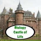 Biology Castle of Life