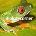 Biologycorner