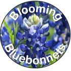 Blooming Bluebonnets