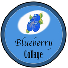Blueberry Collage