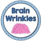 Brain Wrinkles