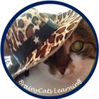 BrainyCats Learning