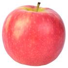 Brave Education