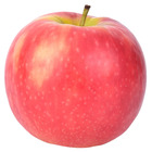 Brave Education