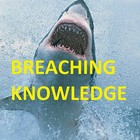 Breaching Knowledge