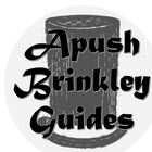 Brinkley Guides