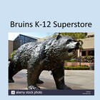 Bruins' French Superstore
