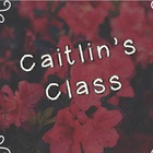 Caitlin's Class