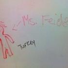 Carolyn Feidel
