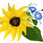 Cheryl Kremer - The Sunny Spot