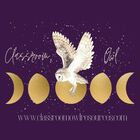 Classroom Owl Resources