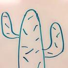 Common Core Cactus Corner