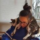 Cool Catz Teach