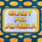 Crazy For Algebra